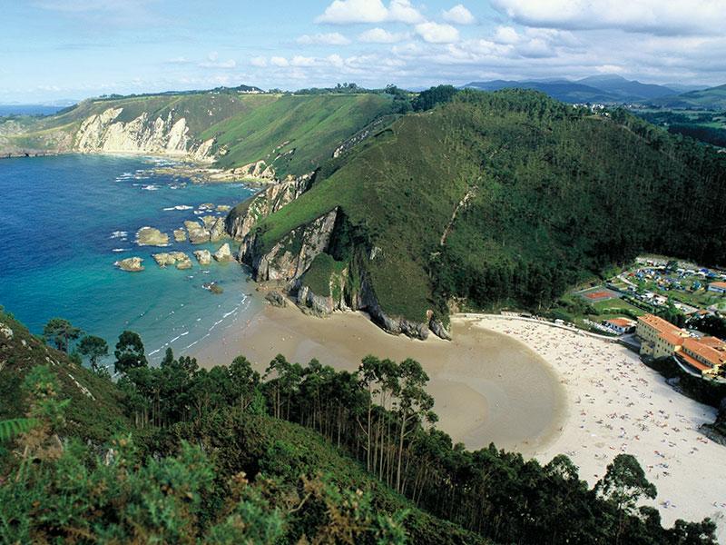 VIII Jornadas Olfativas, Asturias 2020